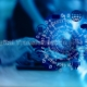 Illumulus Digital Transformation